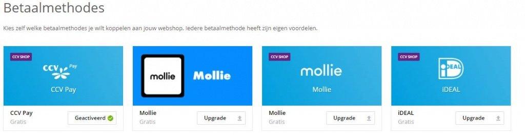 CCV shop ideal mollie