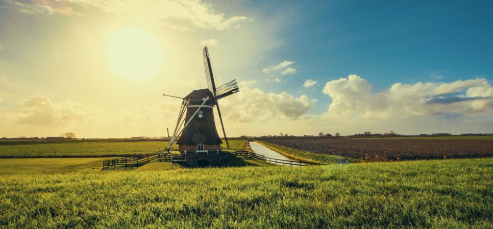 nederland klaar voor amazon